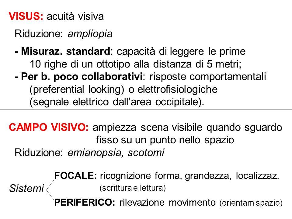 VISUS: acuità visiva Riduzione: ampliopia - Misuraz. standard: capacità di leggere le prime 10 righe di un ottotipo alla distanza di 5 metri; - Per b.
