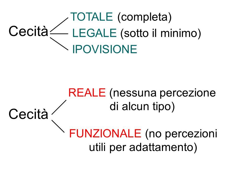FUNZIONALE (no percezioni utili per adattamento) Cecità TOTALE (completa) LEGALE (sotto il minimo) IPOVISIONE REALE (nessuna percezione di alcun tipo)