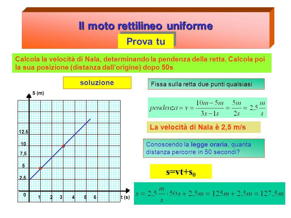 Il moto rettilineo uniforme Prova tu S (m) 123456 2,5 5 7,5 10 12.5 0 t (s) Calcola la velocità di Remo, determinando la pendenza della retta. Calcola