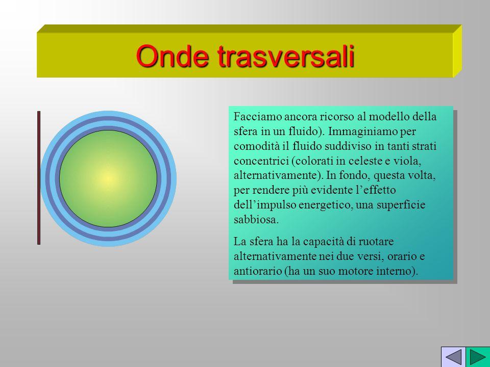 Onde trasversali Facciamo ancora ricorso al modello della sfera in un fluido). Immaginiamo per comodità il fluido suddiviso in tanti strati concentric