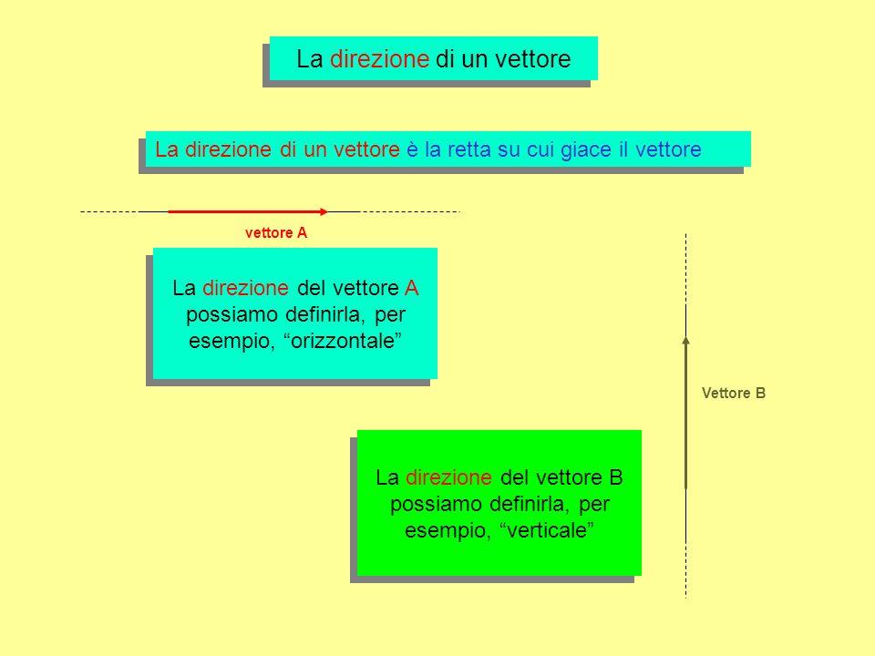 La direzione di un vettore La direzione di un vettore è la retta su cui giace il vettore La direzione del vettore A possiamo definirla, per esempio, orizzontale Vettore B La direzione del vettore B possiamo definirla, per esempio, verticale vettore A