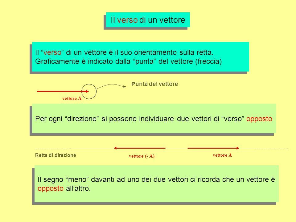 Il verso di un vettore Il verso di un vettore è il suo orientamento sulla retta. Graficamente è indicato dalla punta del vettore (freccia) Il verso di