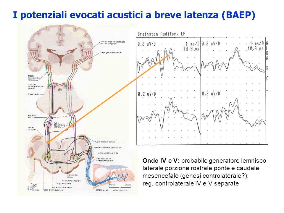 I potenziali evocati acustici a breve latenza (BAEP) clicks con frequenze tonali 500-5000, prodotti da un trasduttore (cuffia) onde quadre monofasiche di durata 100 s stimolo in fase di condensazione: spostamento del diaframma del trasduttore verso lesterno con effetto di aumento di pressione nel condotto uditivo esterno (verso la membrana timpanica) Stimolo in fase di rarefazione: spostamento del diaframma del trasduttore verso linterno con effetto di riduzione della pressione nel CUE.