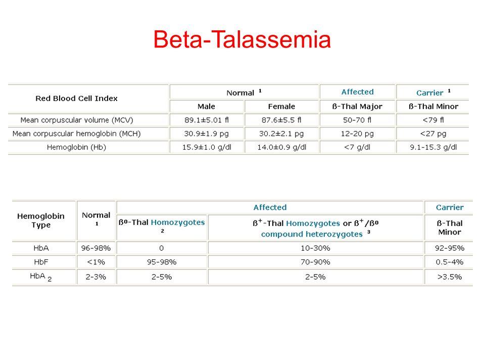 Beta-Talassemia