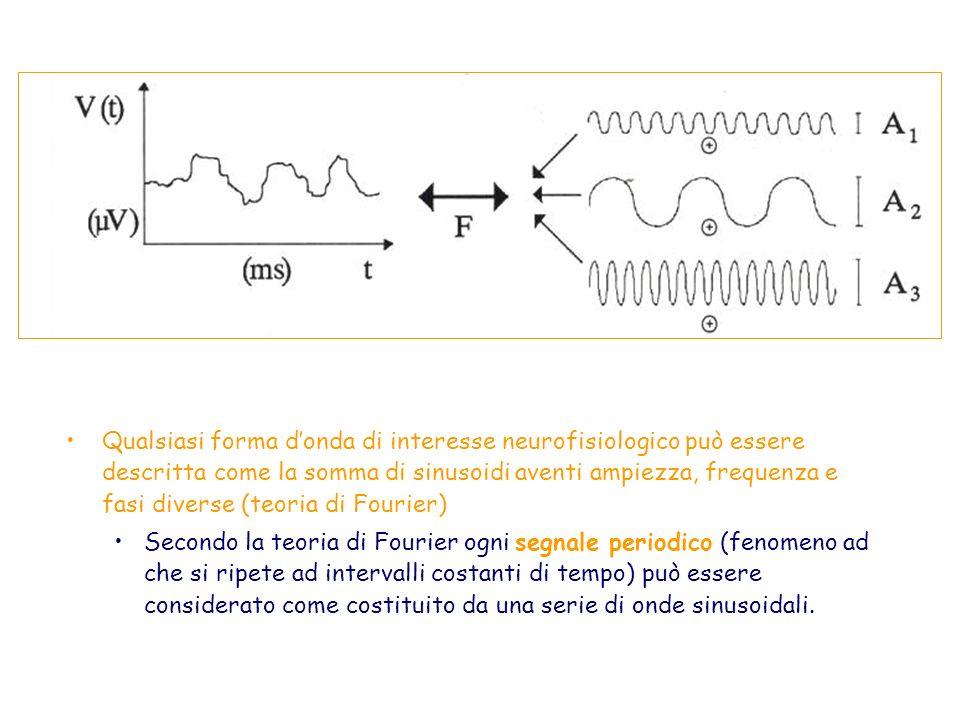 Qualsiasi forma donda di interesse neurofisiologico può essere descritta come la somma di sinusoidi aventi ampiezza, frequenza e fasi diverse (teoria
