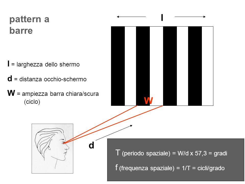 pattern a barre l d l = larghezza dello shermo d = distanza occhio-schermo W = ampiezza barra chiara/scura (ciclo) T (periodo spaziale) = W/d x 57,3 =