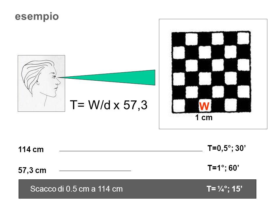 esempio 1 cm 114 cm 57,3 cm T=0,5°; 30 T=1°; 60 T= W/d x 57,3 W Scacco di 0.5 cm a 114 cm T= ¼°; 15
