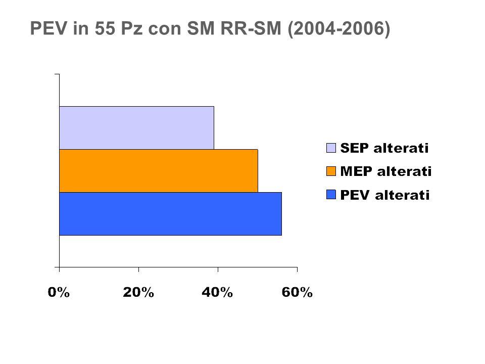 PEV in 55 Pz con SM RR-SM (2004-2006)