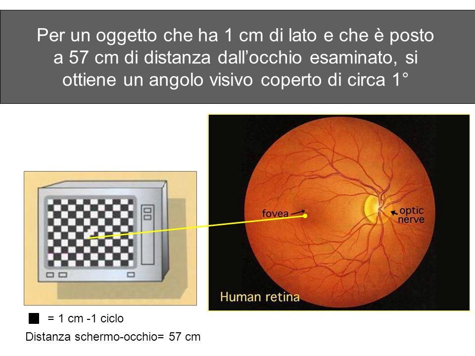 Per un oggetto che ha 1 cm di lato e che è posto a 57 cm di distanza dallocchio esaminato, si ottiene un angolo visivo coperto di circa 1° = 1 cm -1 c