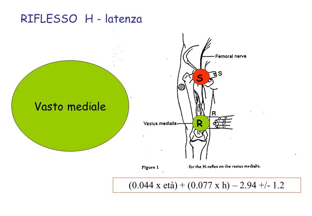(0.044 x età) + (0.077 x h) – 2.94 +/- 1.2 RIFLESSO H - latenza Vasto mediale S R