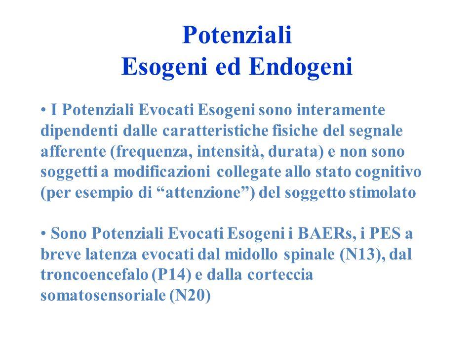 Potenziali Esogeni ed Endogeni I Potenziali Evocati Esogeni sono interamente dipendenti dalle caratteristiche fisiche del segnale afferente (frequenza