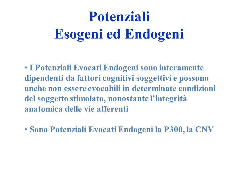 Potenziali Esogeni ed Endogeni I Potenziali Evocati Endogeni sono interamente dipendenti da fattori cognitivi soggettivi e possono anche non essere ev