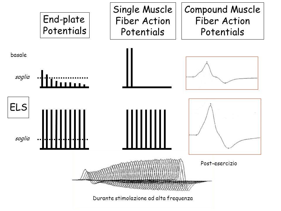 End-plate Potentials Single Muscle Fiber Action Potentials Compound Muscle Fiber Action Potentials ELS soglia basale Post-esercizio