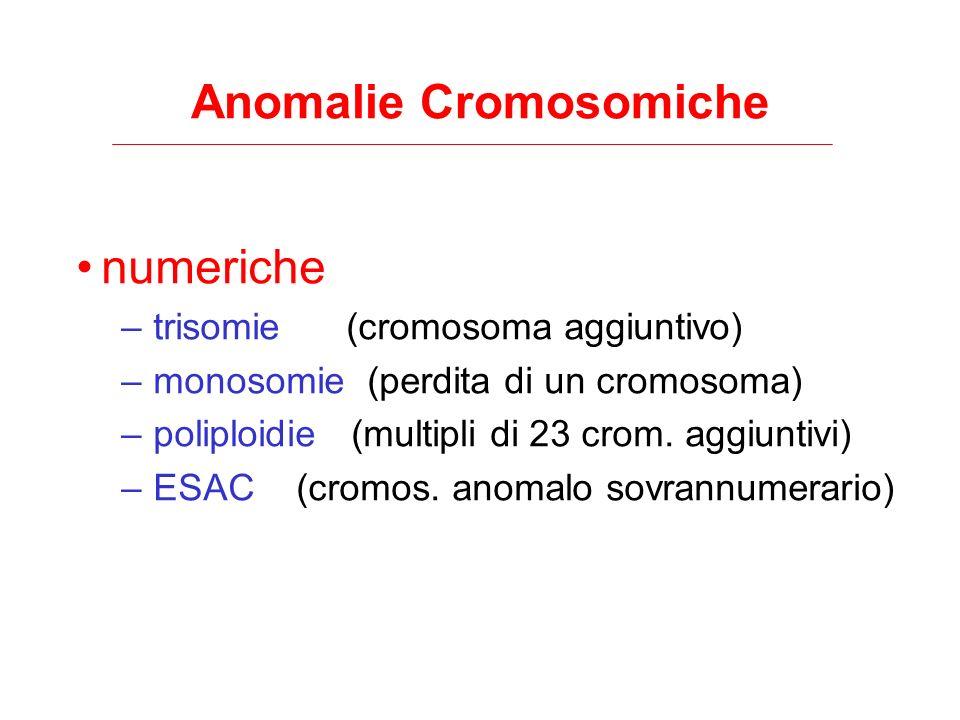 Anomalie Cromosomiche numeriche –trisomie (cromosoma aggiuntivo) –monosomie (perdita di un cromosoma) –poliploidie (multipli di 23 crom. aggiuntivi) –
