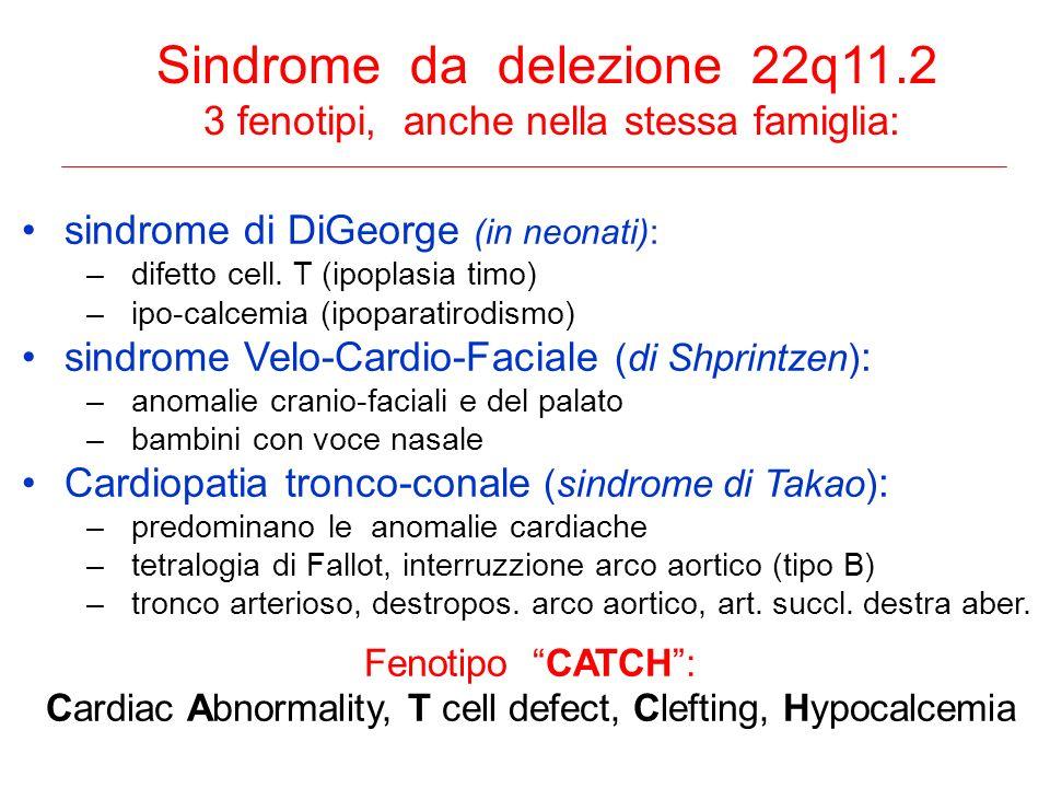 Sindrome da delezione 22q11.2 3 fenotipi, anche nella stessa famiglia: sindrome di DiGeorge (in neonati): –difetto cell. T (ipoplasia timo) –ipo-calce