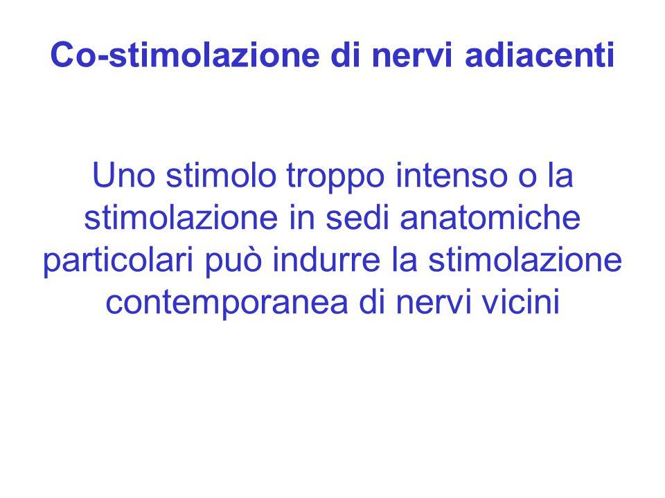Co-stimolazione di nervi adiacenti Uno stimolo troppo intenso o la stimolazione in sedi anatomiche particolari può indurre la stimolazione contemporan
