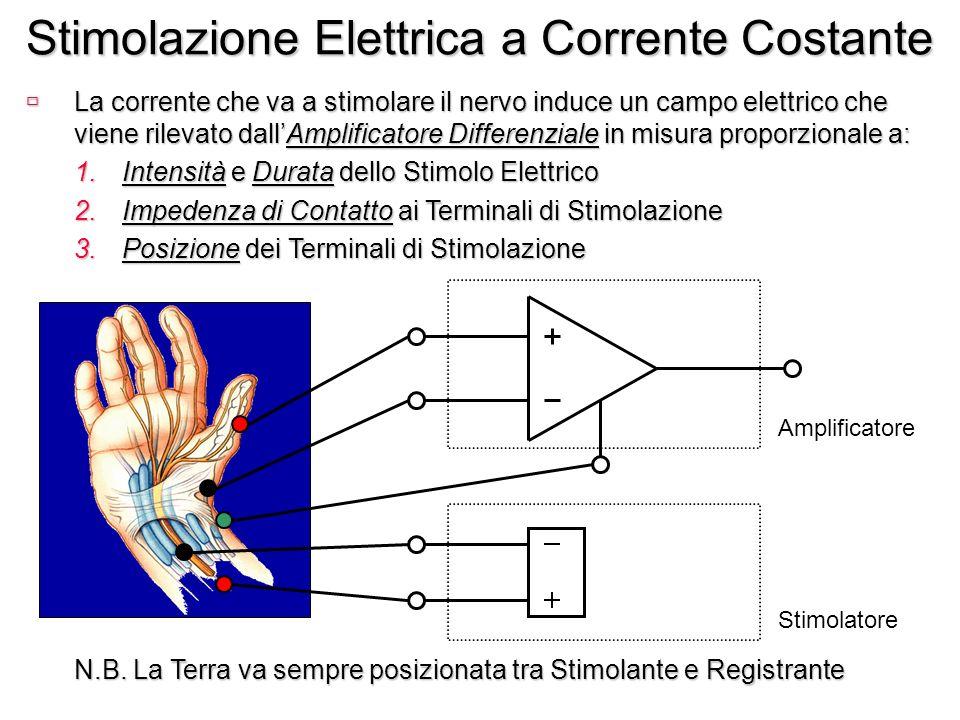 Stimolazione Elettrica a Corrente Costante ùLa corrente che va a stimolare il nervo induce un campo elettrico che viene rilevato dallAmplificatore Dif