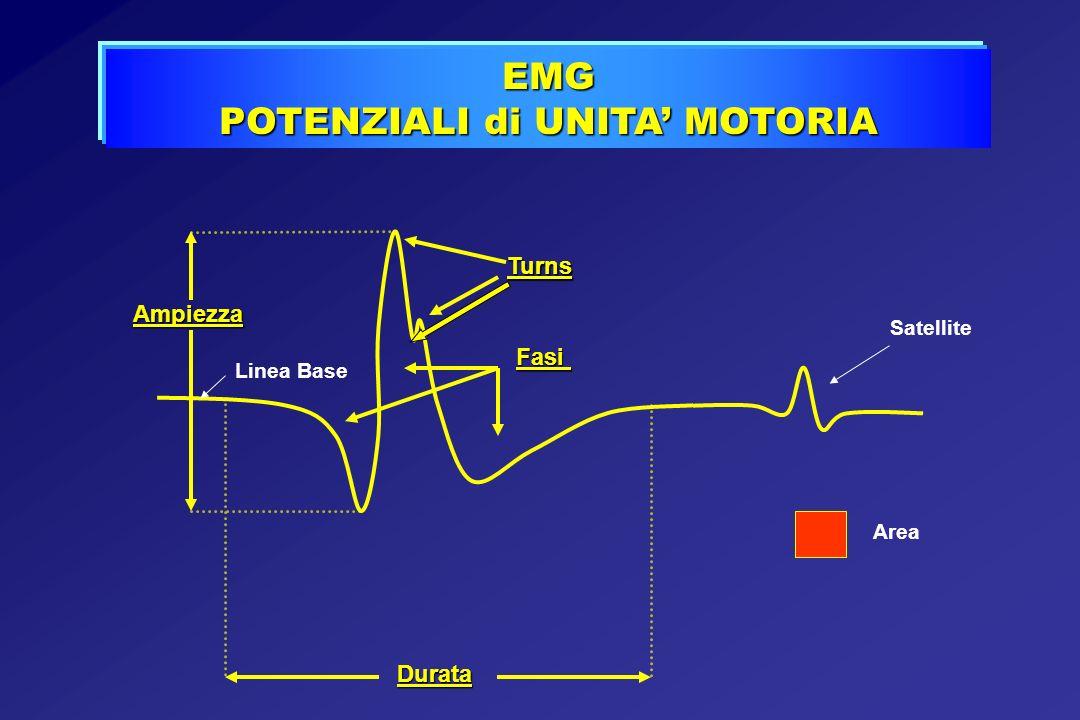 EMG POTENZIALI di UNITA MOTORIA Ampiezza Linea BaseTurns Fasi Area Durata Satellite