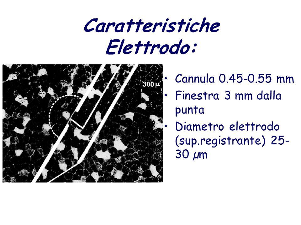 Caratteristiche Elettrodo: Cannula 0.45-0.55 mm Finestra 3 mm dalla punta Diametro elettrodo (sup.registrante) 25- 30 µm