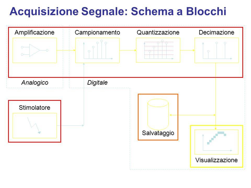 Acquisizione Segnale: Schema a Blocchi Salvataggio AnalogicoDigitaleAmplificazioneCampionamentoDecimazione Visualizzazione Quantizzazione Stimolatore