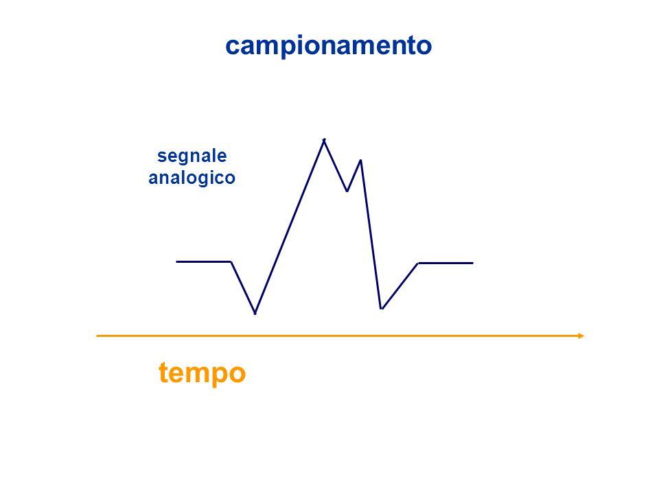 campionamento tempo segnale analogico