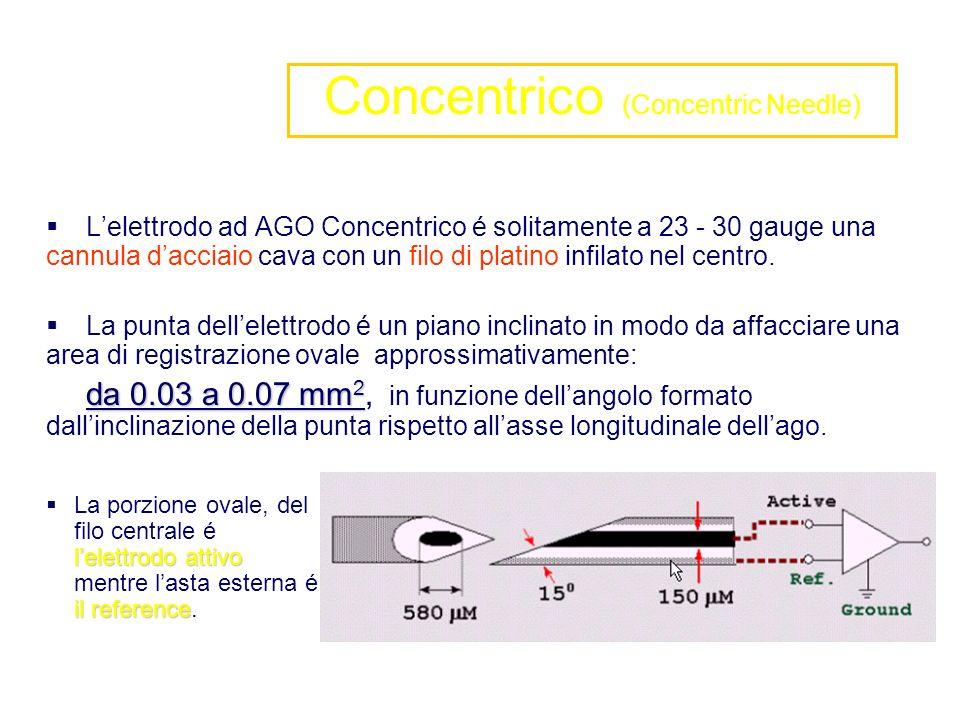 Lelettrodo ad AGO Concentrico é solitamente a 23 - 30 gauge una cannula dacciaio cava con un filo di platino infilato nel centro. La punta dellelettro