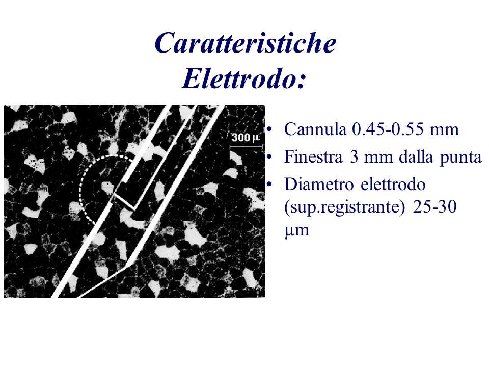 Caratteristiche Elettrodo: Cannula 0.45-0.55 mm Finestra 3 mm dalla punta Diametro elettrodo (sup.registrante) 25-30 µm