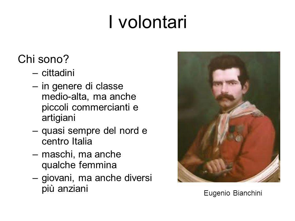 I volontari Chi sono? –cittadini –in genere di classe medio-alta, ma anche piccoli commercianti e artigiani –quasi sempre del nord e centro Italia –ma
