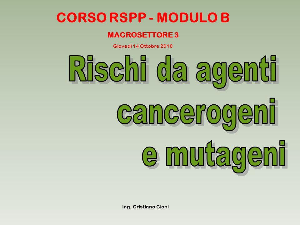CORSO RSPP - MODULO B MACROSETTORE 3 Ing. Cristiano Cioni Giovedì 14 Ottobre 2010