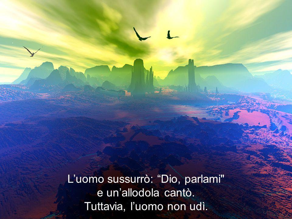 Luomo sussurrò: Dio, parlami e unallodola cantò. Tuttavia, luomo non udì.
