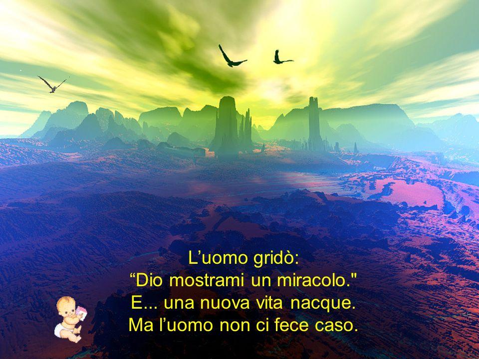 Luomo gridò: Dio mostrami un miracolo. E... una nuova vita nacque. Ma luomo non ci fece caso.