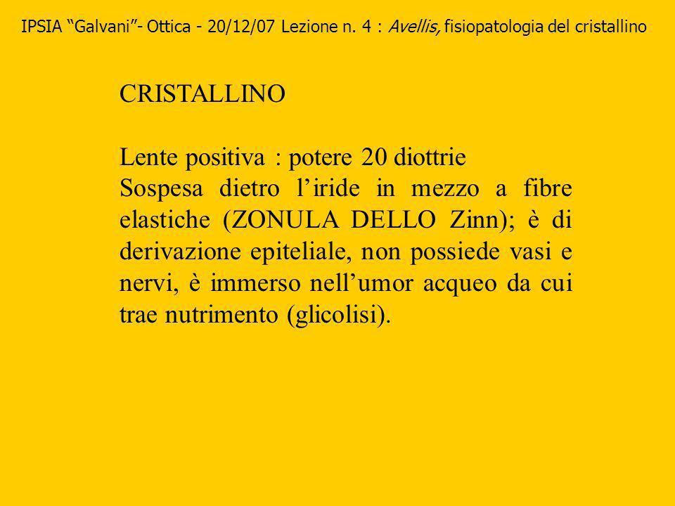 CRISTALLINO Lente positiva : potere 20 diottrie Sospesa dietro liride in mezzo a fibre elastiche (ZONULA DELLO Zinn); è di derivazione epiteliale, non