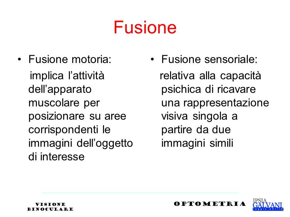 Fusione Fusione motoria: implica lattività dellapparato muscolare per posizionare su aree corrispondenti le immagini delloggetto di interesse Fusione
