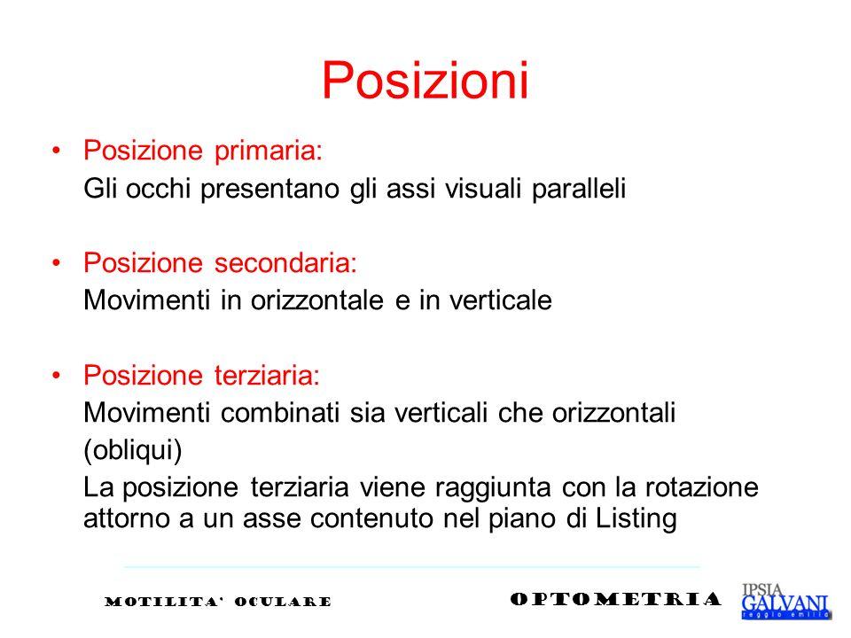 Posizioni Posizione primaria: Gli occhi presentano gli assi visuali paralleli Posizione secondaria: Movimenti in orizzontale e in verticale Posizione