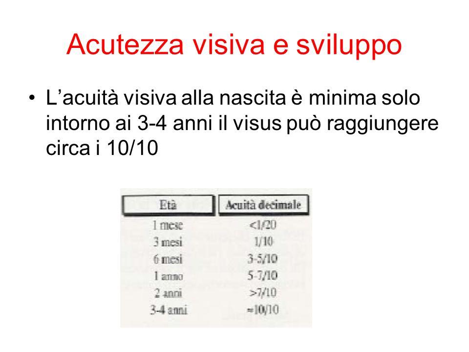 Acutezza visiva e sviluppo Lacuità visiva alla nascita è minima solo intorno ai 3-4 anni il visus può raggiungere circa i 10/10