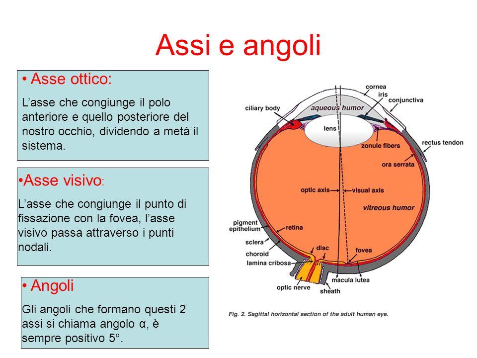 Assi e angoli Asse ottico: Lasse che congiunge il polo anteriore e quello posteriore del nostro occhio, dividendo a metà il sistema. Asse visivo : Las