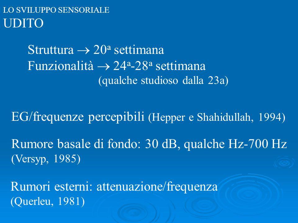 LO SVILUPPO SENSORIALE UDITO Struttura 20 a settimana Funzionalità 24 a -28 a settimana (qualche studioso dalla 23a) EG/frequenze percepibili (Hepper