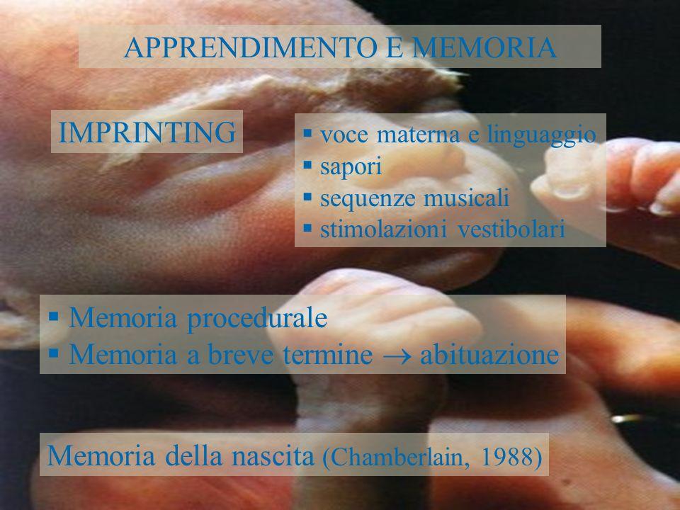 APPRENDIMENTO E MEMORIA IMPRINTING voce materna e linguaggio sapori sequenze musicali stimolazioni vestibolari Memoria procedurale Memoria a breve ter