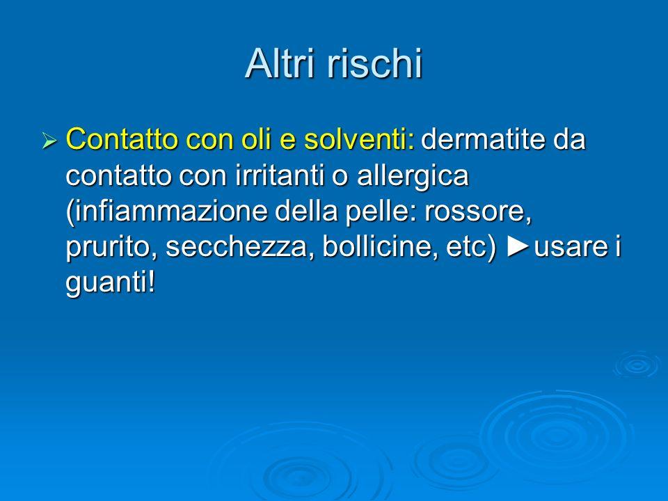 Altri rischi Contatto con oli e solventi: dermatite da contatto con irritanti o allergica (infiammazione della pelle: rossore, prurito, secchezza, bol