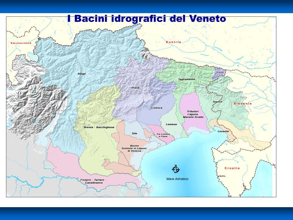 On. le Rodolfo Viola I Bacini idrografici del Veneto