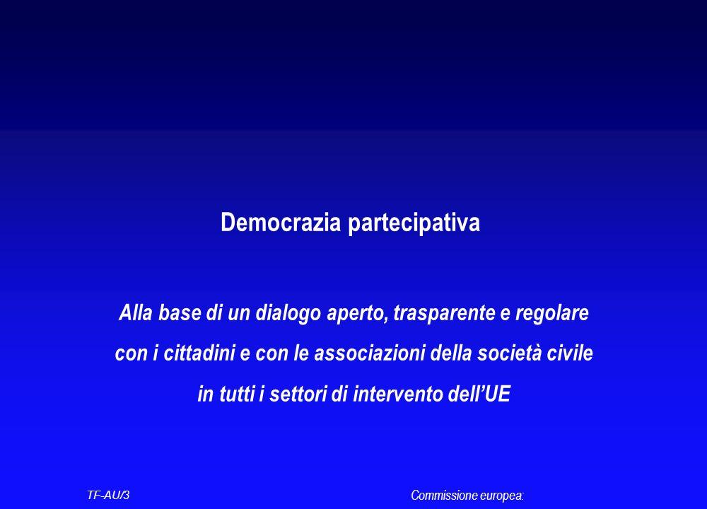 Democrazia partecipativa Alla base di un dialogo aperto, trasparente e regolare con i cittadini e con le associazioni della società civile in tutti i settori di intervento dellUE Commissione europea: TF-AU/3