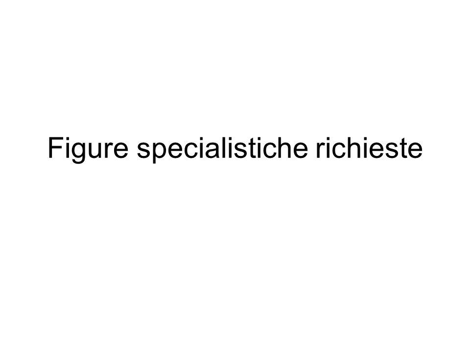 Figure specialistiche richieste