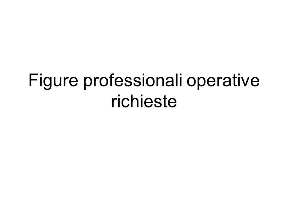 Figure professionali operative richieste