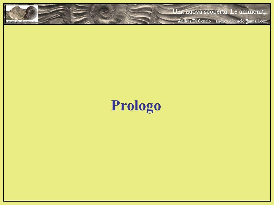 Prologo Una nuova scoperta. Le ammoniti. Andrea Di Cencio – andrea.dicencio@gmail.com