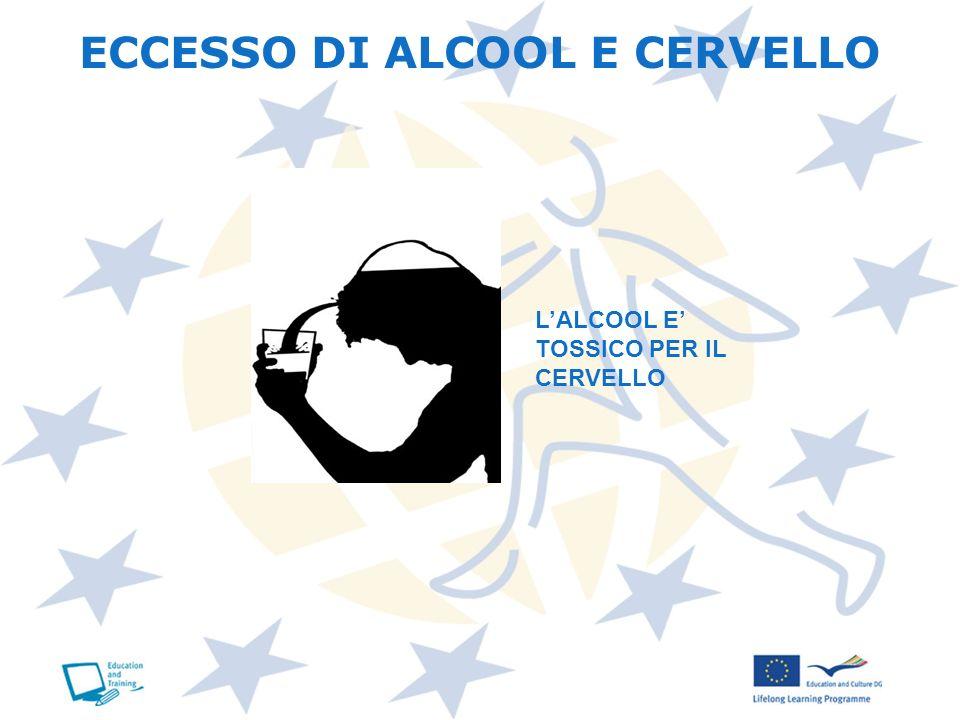 ECCESSO DI ALCOOL E CERVELLO LALCOOL E TOSSICO PER IL CERVELLO