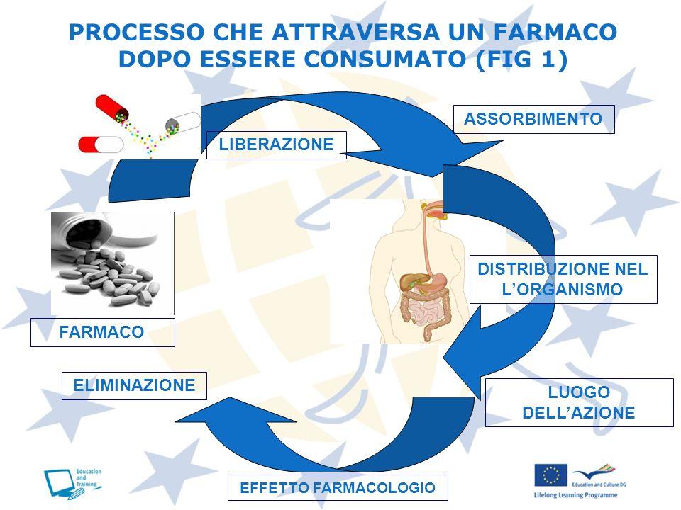 PROCESSO CHE ATTRAVERSA UN FARMACO DOPO ESSERE CONSUMATO (FIG 1) LIBERAZIONE ASSORBIMENTO DISTRIBUZIONE NEL LORGANISMO LUOGO DELLAZIONE EFFETTO FARMAC