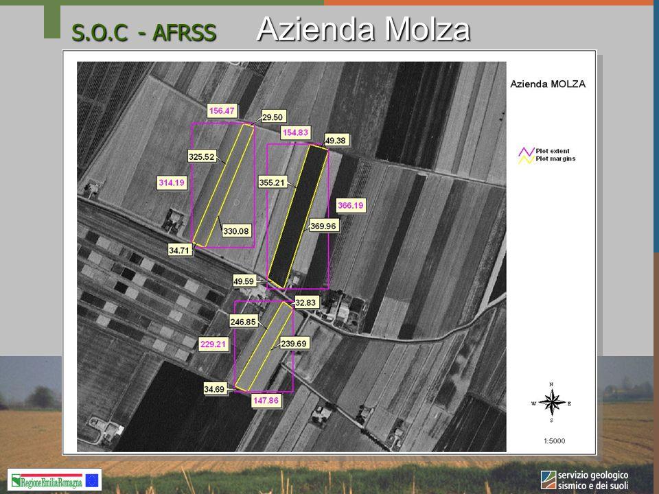 S.O.C- AFRSS Azienda Molza