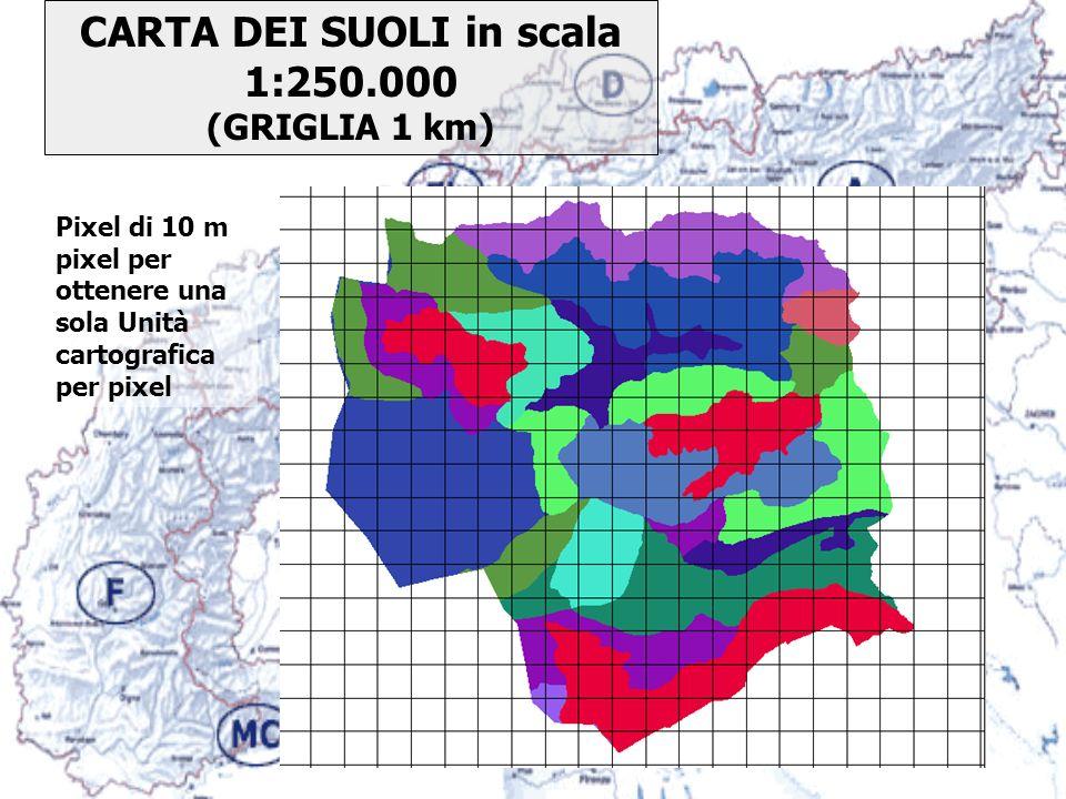 CARTA DEI SUOLI in scala 1:250.000 (GRIGLIA 1 km) Pixel di 10 m pixel per ottenere una sola Unità cartografica per pixel