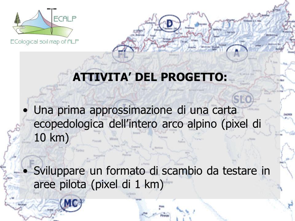 ATTIVITA DEL PROGETTO: Una prima approssimazione di una carta ecopedologica dellintero arco alpino (pixel di 10 km) Sviluppare un formato di scambio d