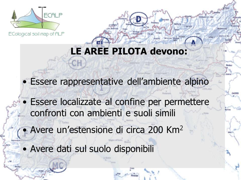 LE AREE PILOTA devono: Essere rappresentative dellambiente alpino Essere localizzate al confine per permettere confronti con ambienti e suoli simili A